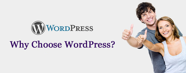 WordPress CMS platform | Velsof