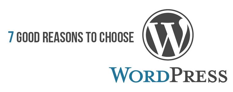 Reasons to choose WordPress as your website development platform- Volume 2 | Velsof