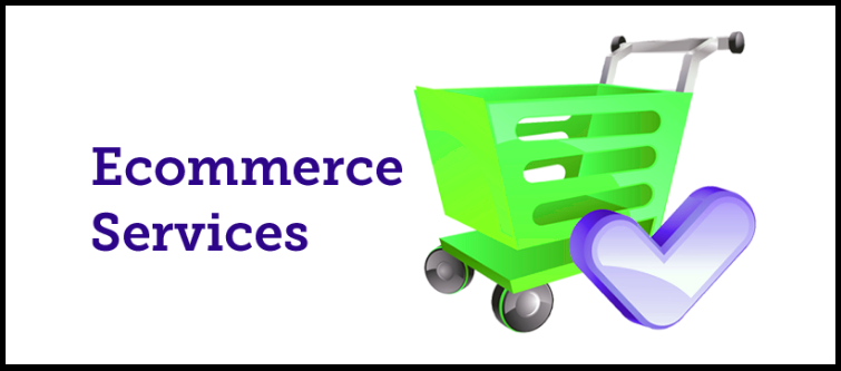 Best eCommerce services company in India | Velsof