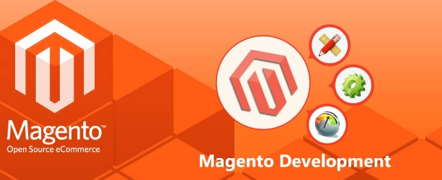 What you need to look out in an excellent Magento development company | Velsof