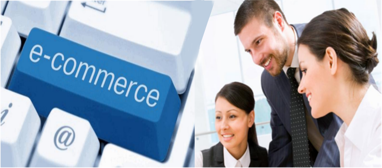 eCommerce Consulting Services | Velsof