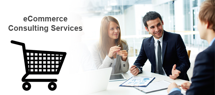 How to get the best eCommerce consulting services for your eCommerce company? | Velsof