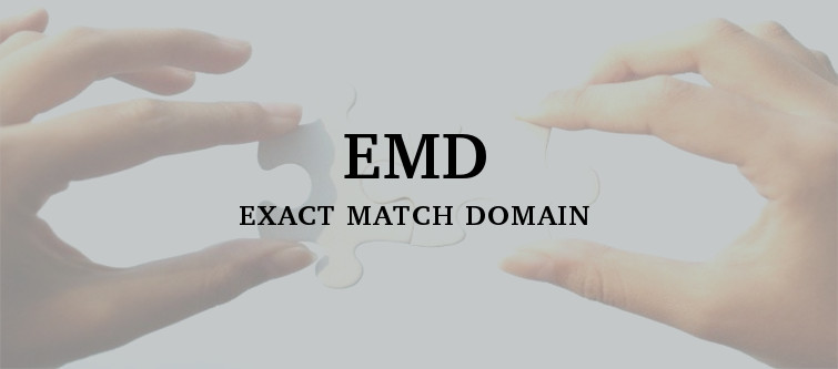 Google might re-initiate its hunt for exact match domains (EMD) | Velsof