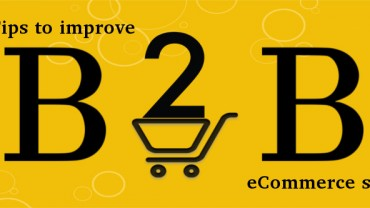 How can you optimize the growth of your B2B eCommerce site? | Velsof