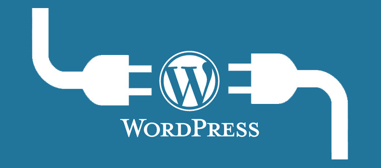 How to install a WordPress Plugin? | Velsof