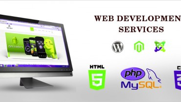 What are the components of an effective web development? | Velsof