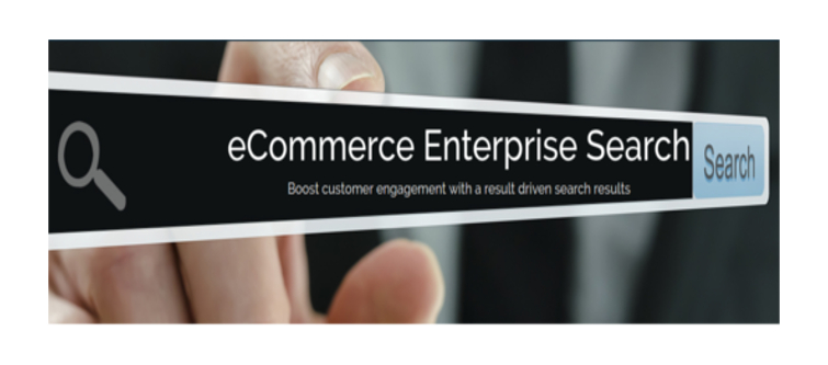 What role does eCommerce enterprise services play in your online business?- E-Commerce Enterprise Search | Velsof