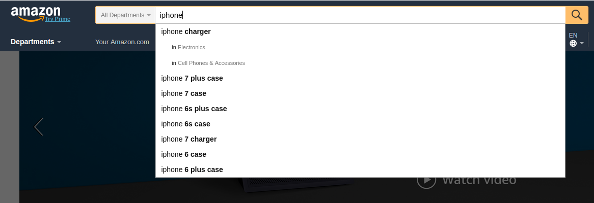 Amazon Website Search Box results