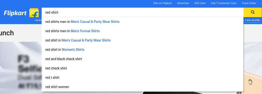 Flipkart's search box
