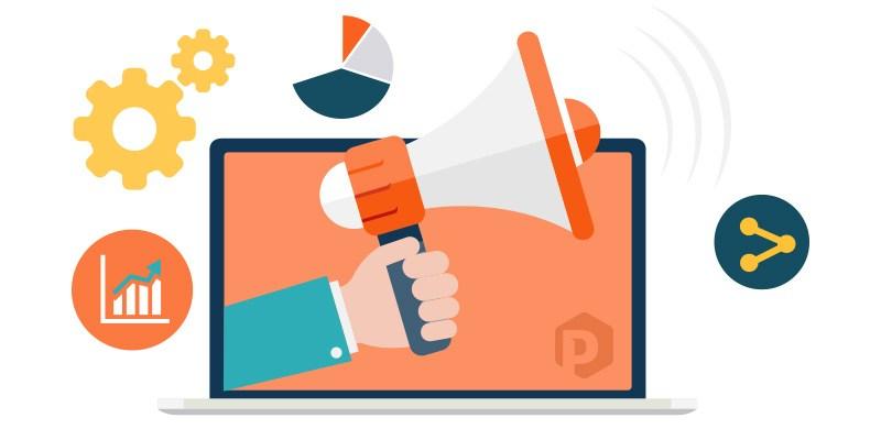 Content campaigns